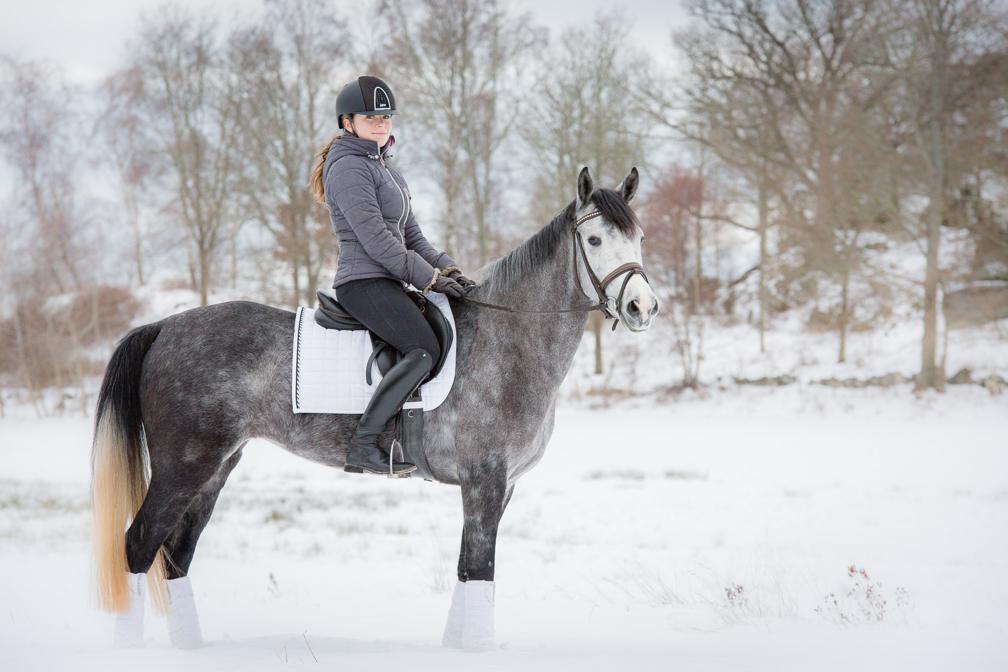 Annatarfoto Ebbadressage Ebba Nilsson Ella Torkö Ronneby hästfotografering
