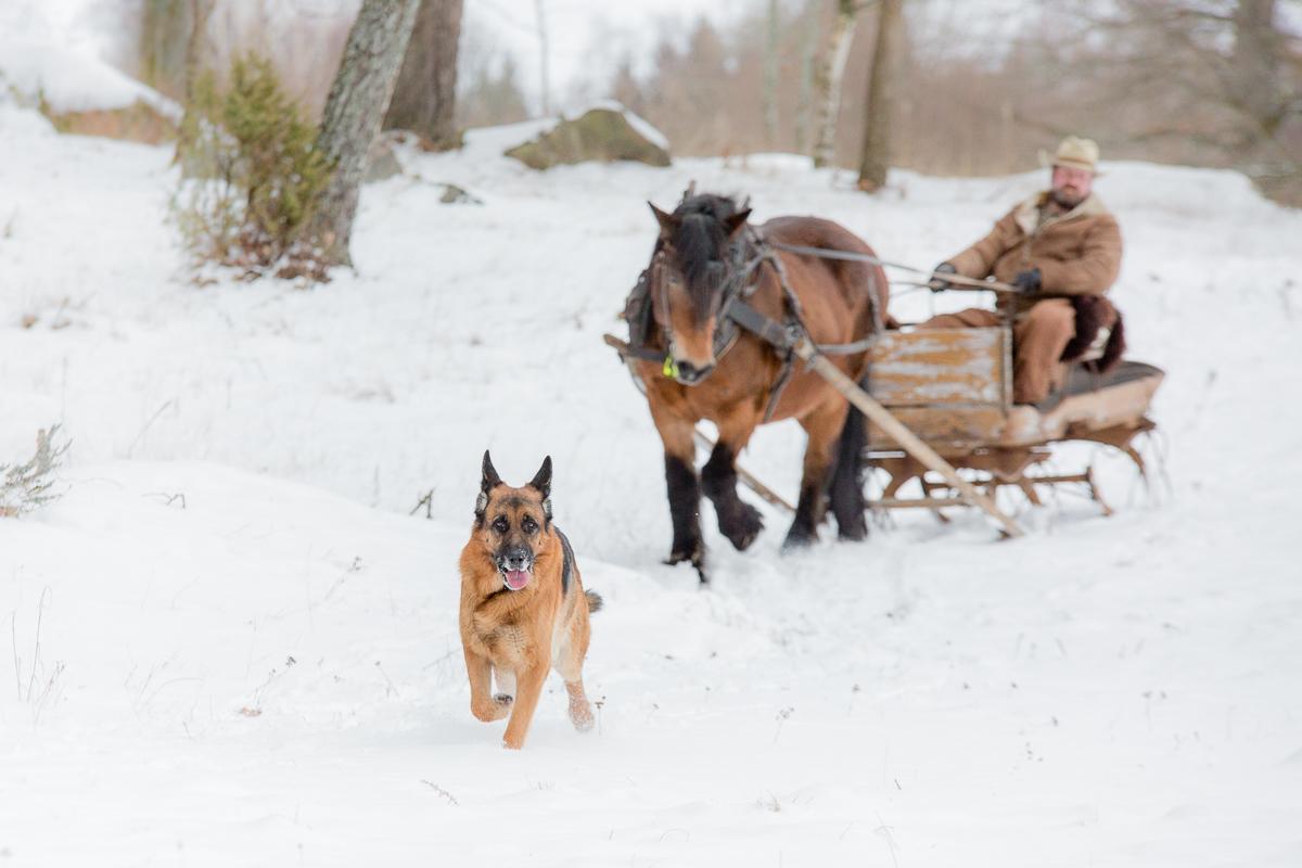 Lugna Western Ramsjömåla Bräkne-Hoby Magnus Hagström Westernridning Annatarfoto